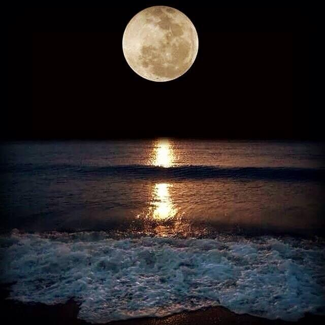 "Super moon. This astonishing photo was taken by ""Tank"" Shireman on Pensacola Beach, August 11, 2014."